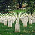 36 Arlington Cemetery 3