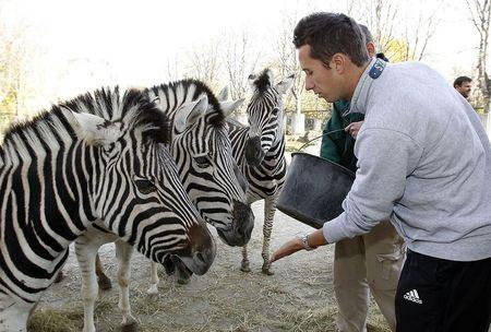 Philipp Kohlschreiber Vienna.10 Zoo 2