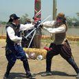 23 Sword Fighters