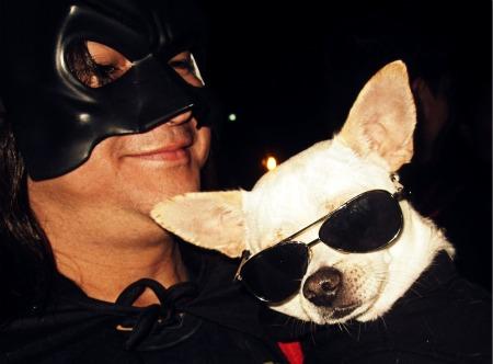 12 Aye Chihuahua
