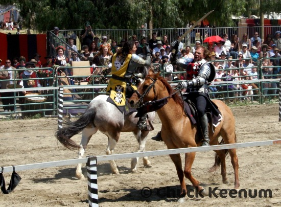 9 Jousting Fight