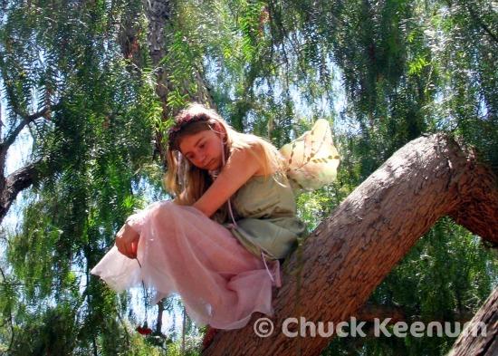 4 Fairy Girl in Tree 2
