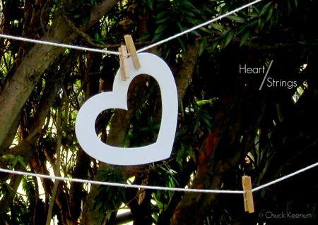 Heart Strings - smaller