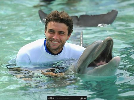 Gilles Simon Miami 2012 Swim with Dolphins g