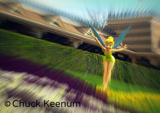Disney Tinkerbell - Lens Angeles