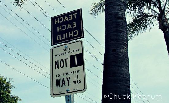 Teach Each Child Backwards - Lens Angeles