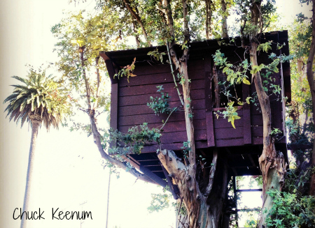 Tree House in BH - 1 - Copy