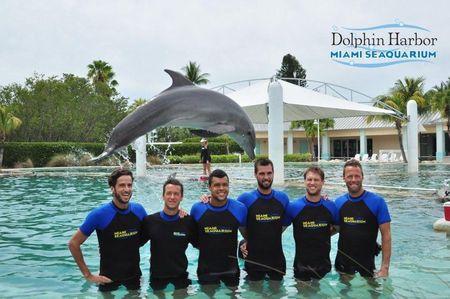 ATP Stars Miami 2013 Dolphin Love