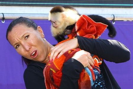 Jelena Jankovic Miami 2013 Monkeying Around