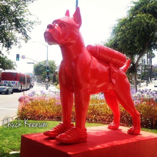 Sweetlove Red Dog - Lens Angeles