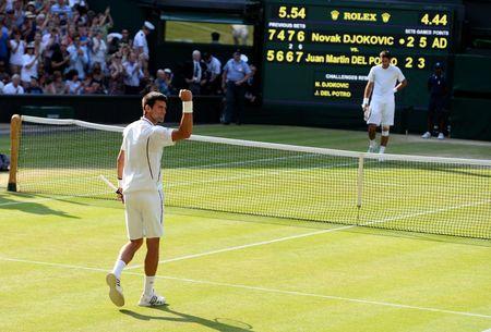 Novak Djokovic Wimbledon 2013 Semifinal Win