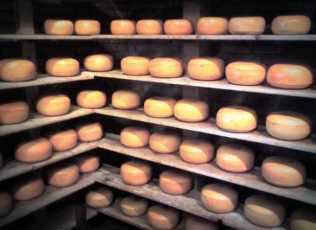 The_cheese_2