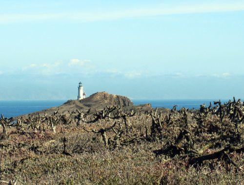 27 Lighthouse 4