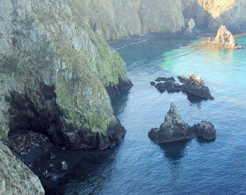 28 Sea Lion Cove