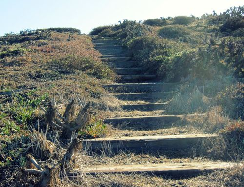 30 Trail Stairs