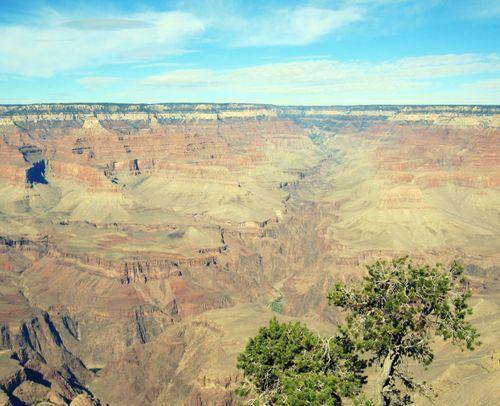 19 Grand Canyon