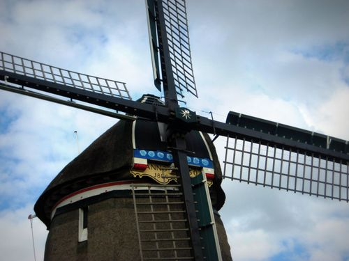 22 Windmill 2