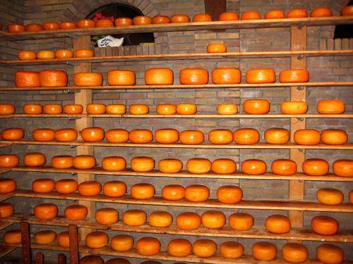 24 Volendam's Gouda