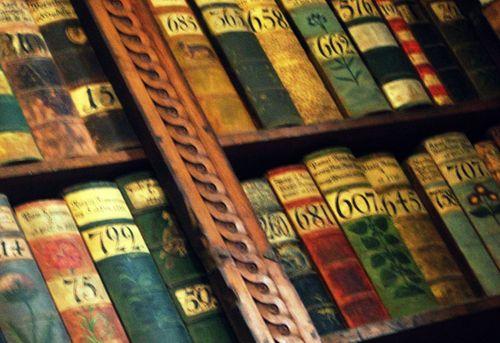 10 Kings Library