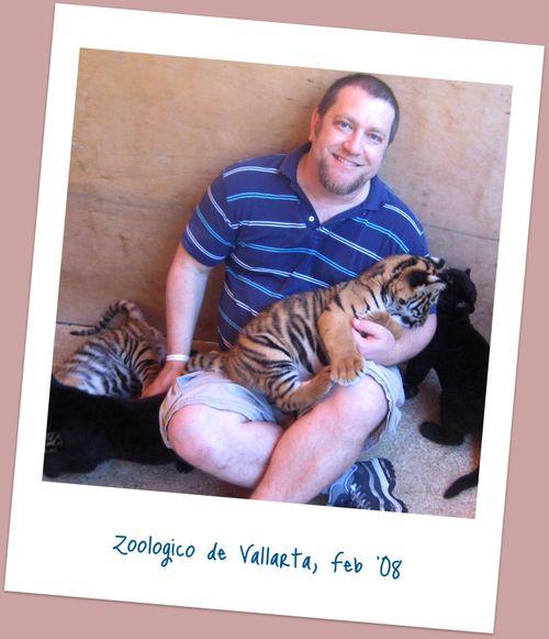 35 Chux Tigers 1