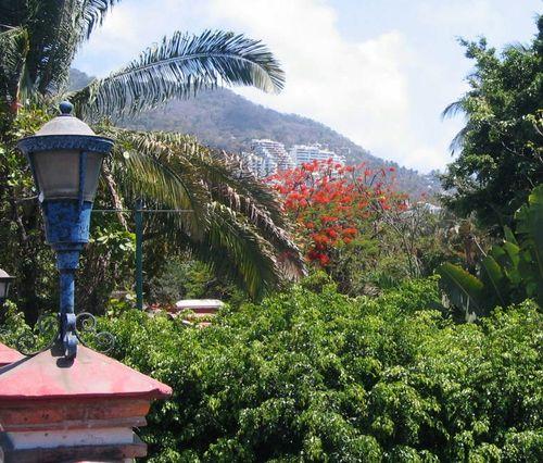 40 Pto Vallarta Hillside