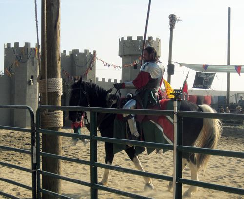26 Jousting Knight